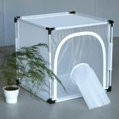 BugDorm-6S610 Insect Rearing Cage