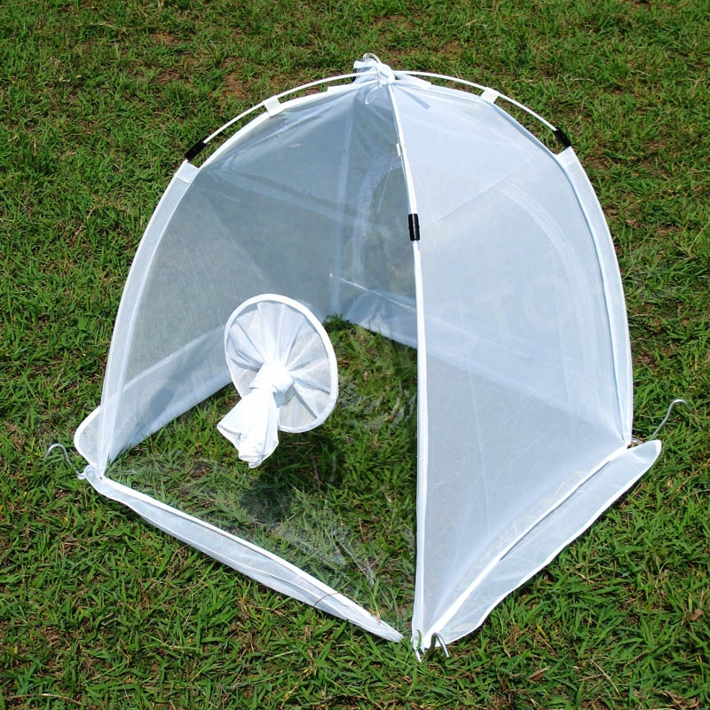 Tap to Expand & Soil Emergence Trap - Headless | BugDorm Store