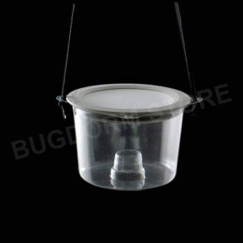 Insect Bait Trap with Wire Screen Lid
